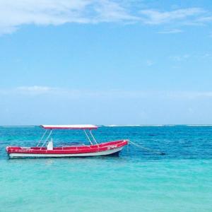 Puerto Morelos, Quintana Roo